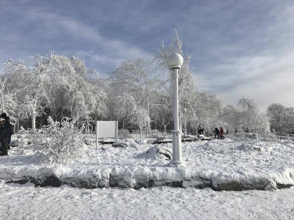 Una ola de frío polar congela EEUU y deja ya 16 muertos - Mundo ... 12ef79be2ea
