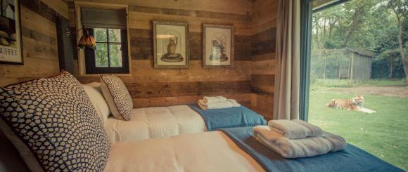 Fotografía del 'Tiger Lodge', la suite para convivir con tigres.
