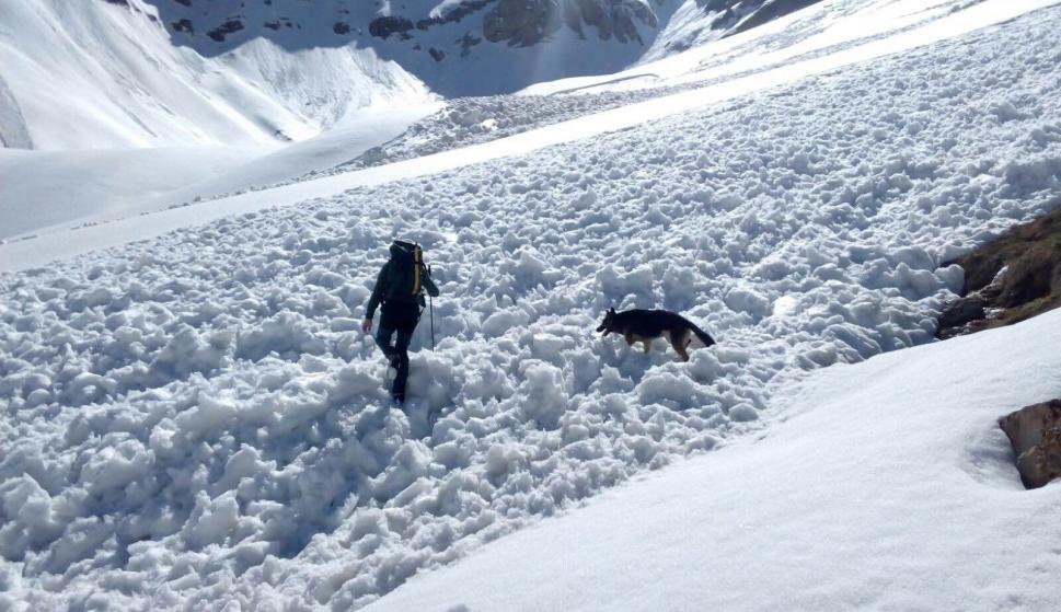 Se reanuda la búsqueda del montañero desaparecido este sábado en el ...