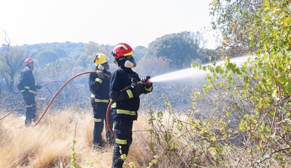 Bomberos incendio Cadalso y Cenicientos