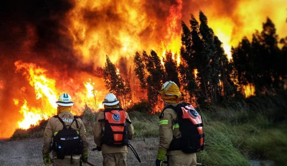 Los graves incendios en el centro de Portugal causaron ya ocho heridos, siete bomberos leves y un civil grave trasladado a la unidad de quemados de un hospital de Lisboa. /Grupo de Intervenção de Proteção e Socorro