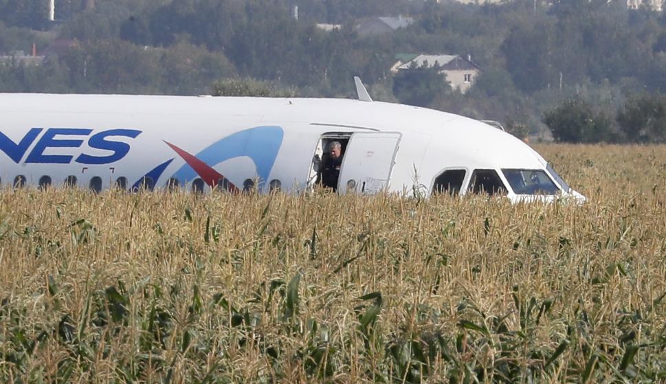 El A-321 de Ural Airlines en el lugar de su aterrizaje de emergencia en un campo de maíz en la región de Moscú. /EFE/EPA/SERGEI ILNITSKY