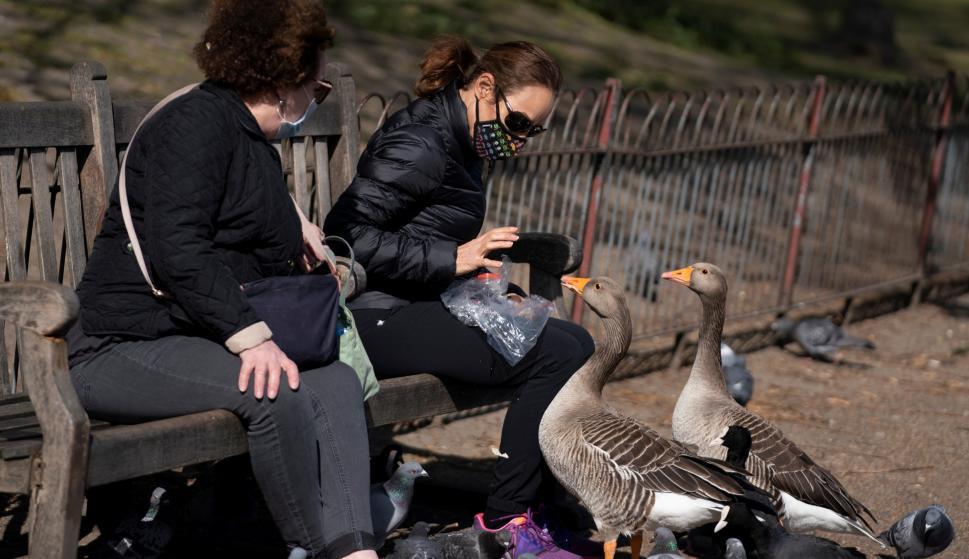 Una mujer con una máscara facial alimenta pájaros en St James Park, en el centro de Londres, Reino Unido, el 13 de abril de 2020. /EFE