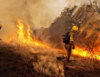 España ardió en 2017