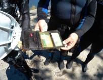Buceadores encuentran una cartera con dinero en pesetas durante unas tareas de limpieza en el Lago de Sanabria (Zamora)