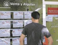 Un hombre mirando ofertas de pisos de alquiler en los expositores de una inmobiliaria de Madrid. - EFE