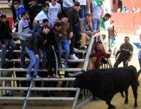 Las fiestas con toros, comunes en Semana Santa