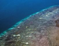 Vista aérea de la Barrera de Coral en Australia.EFE/Terry Hughes/Universidad James Cook