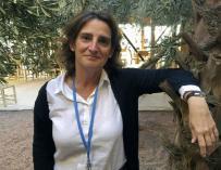 Fotografía de Teresa Ribera, nueva ministra de Medio Ambiente