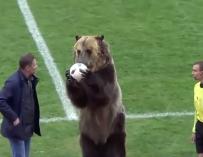 Fotografía del oso en un partido de fútbol de Rusia.