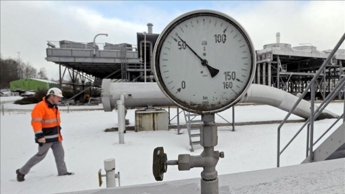 España, pendiente de Bouteflika: compra en Argelia el 50% del gas que importa