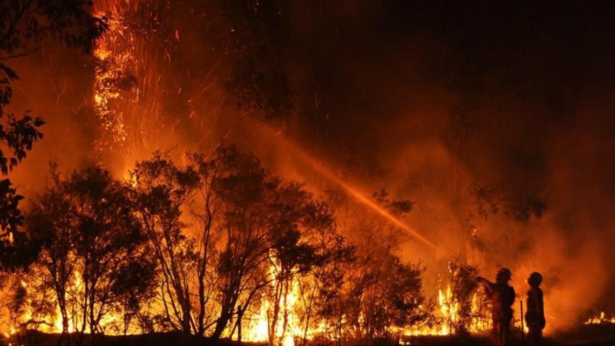 La impactante reacción de un escuadrón de bomberos en primera línea de fuego